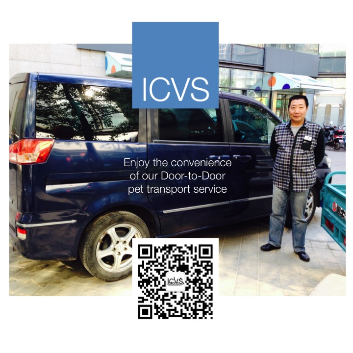 icvspettransport eng